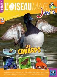 Oiseau_Mag_Junior