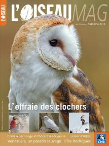 Oiseau_magazine